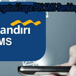 Lupa PIN SMS Banking Mandiri