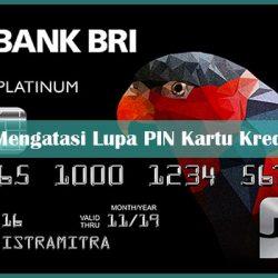 Cara Mengatasi Lupa PIN Kartu Kredit BRI